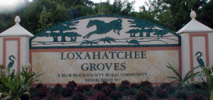 Lox Groves 1918