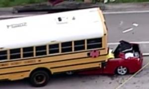 school bus 11918